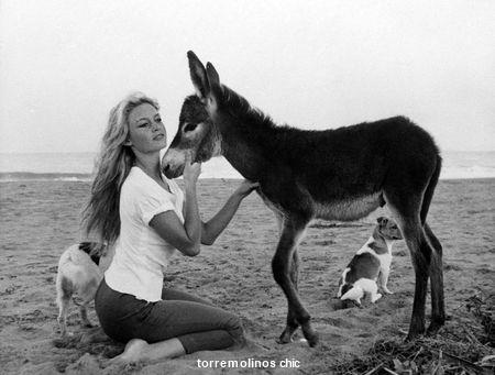 Brigitte bardot torremolinos