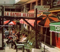 Plaza gamba alegre